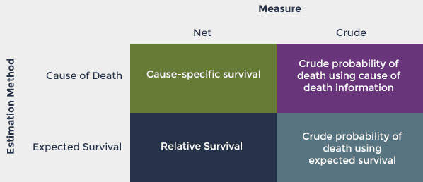Table shows the relationship of the survival measure (net or crude) to the estimation method (cause of death or expected survival)